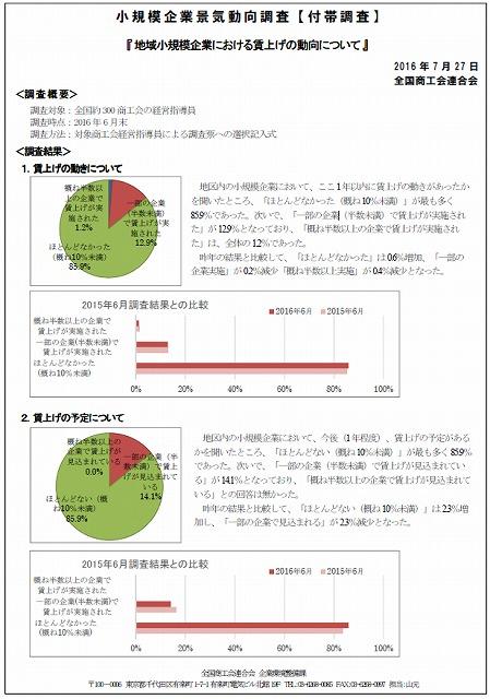 平成28年06月 景気動向調査(付帯調査)①